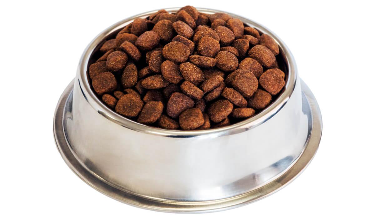 divinus-pet-food-bowl